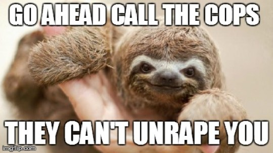 Go ahead call the cops they can't unrape you Funny Sloth Rape Memes Graphics