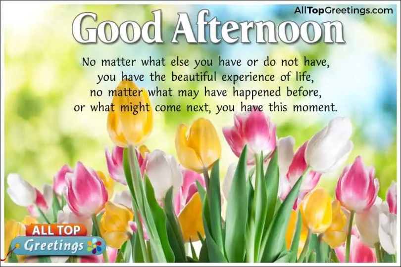 Good Afternoon Message Greetings Image