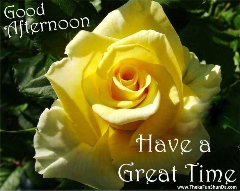 Good Afternoon Rose Greetings Image
