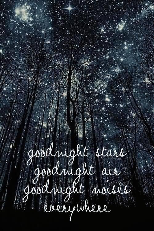 Goodnight Moon Quotes Goodnight stars goodnight air goodnight noises everywhere (2)