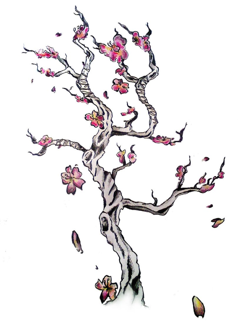 Great Black And Red Color Ink Cherry Blossom Tree Tattoo Design For Girls