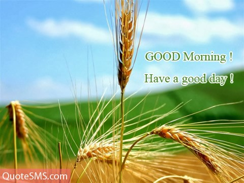 Have A Good Day Good Morning Wishes Image