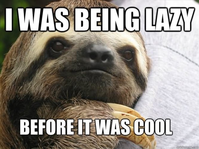 I was Being Lazy Before It Was Cool Funny Lazy Memes