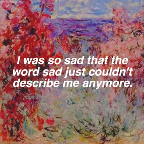 I was so sad that the word sad just couldn't describe me anymore