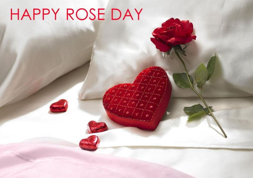 Incredible Rose Day Wishes For Boyfriend