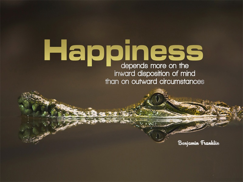 Inspirational Happiness Sayings Happiness depends more on the inward depiction of mind than on outward circumstances Benjamin Franklin