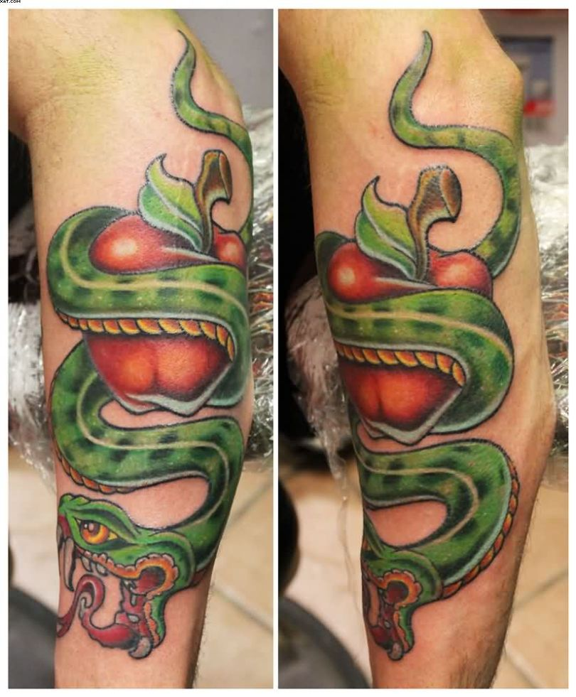Inspiring Green Red And Yellow Color Ink Snake Wrap Apple Tattoo Design For boys