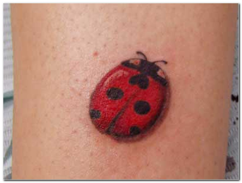 Lovely Black And Red Color Ink Red Lady Bug Tattoo Image On Arm For Girls