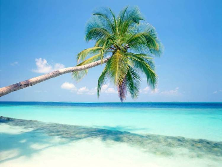 Most Amazing Beach Photography HD 4K Wallpaper