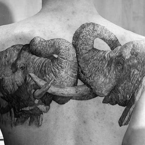 Most Wonderful two elephants male upper back realistic tattoo ideas with black ink for man and woman