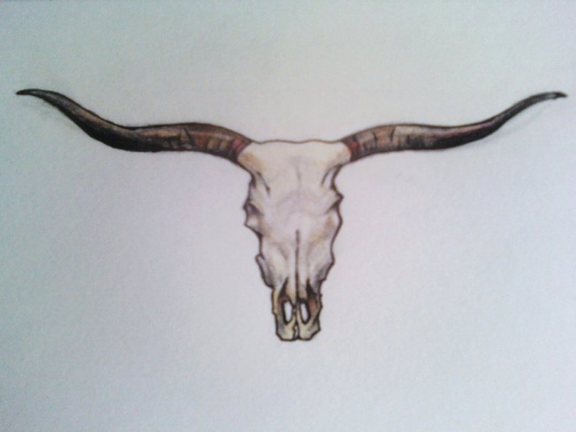 Nice Black White And Brown Color Ink Longhorn Bull Skull Tattoo Design For Boys