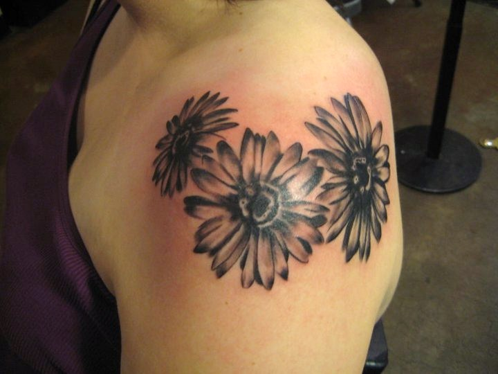 Sensation Red And Black Color Ink Daisy Tattoo On Shoulder For Girls