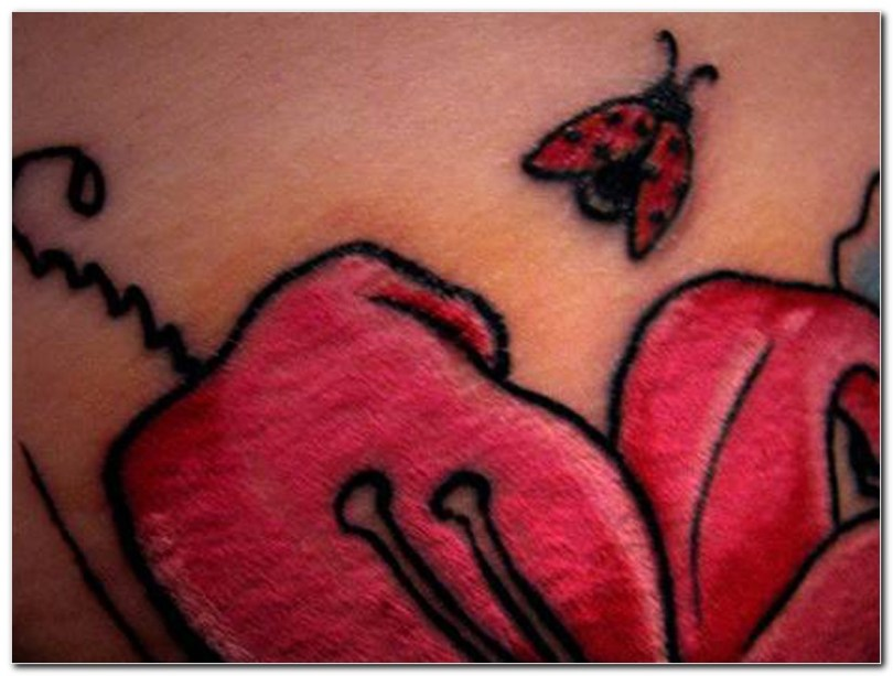Sweet Black And Red Color Ink Flying Lady Bug Tattoo On Back For Girls
