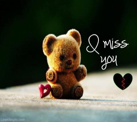 Teddy Bear Wishes I Miss You
