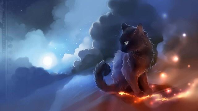 Unique Gray Cat On Fire 4K Wallpaper