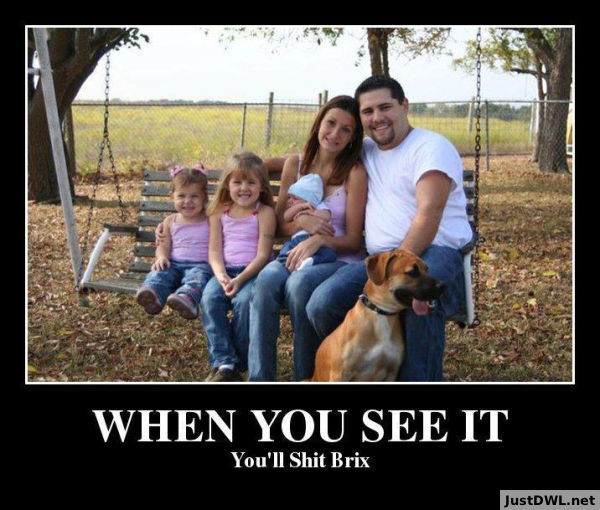When You See It You Will Brix Funny WTF Memes