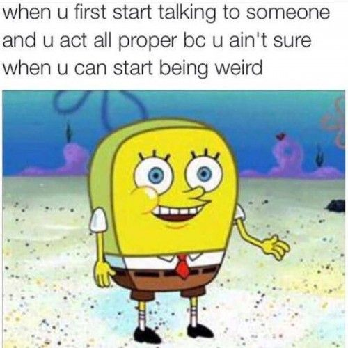 When u first start talking to someone and u act all proper bc u ain't sure Funny Spongebob Memes Pictures