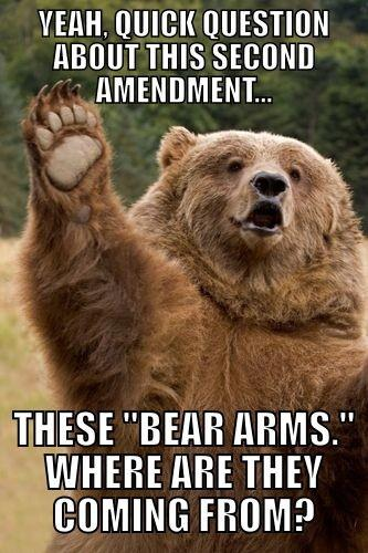 Yeah quick question about this second amendment Love Memes