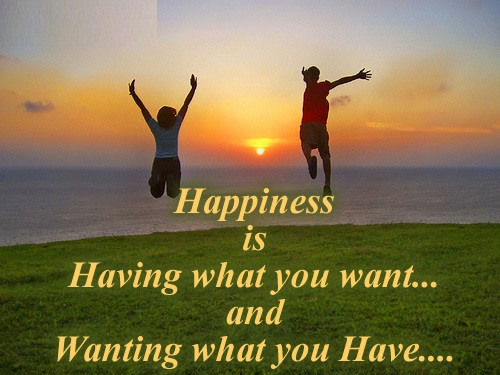 happiness is having what you want and wanting what you have