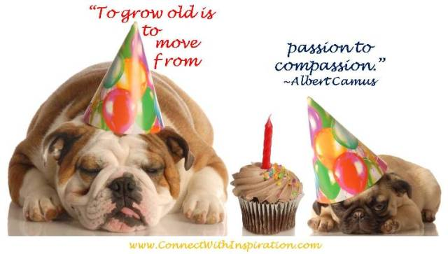 to grow old is to move from passion to compassion. albert camus