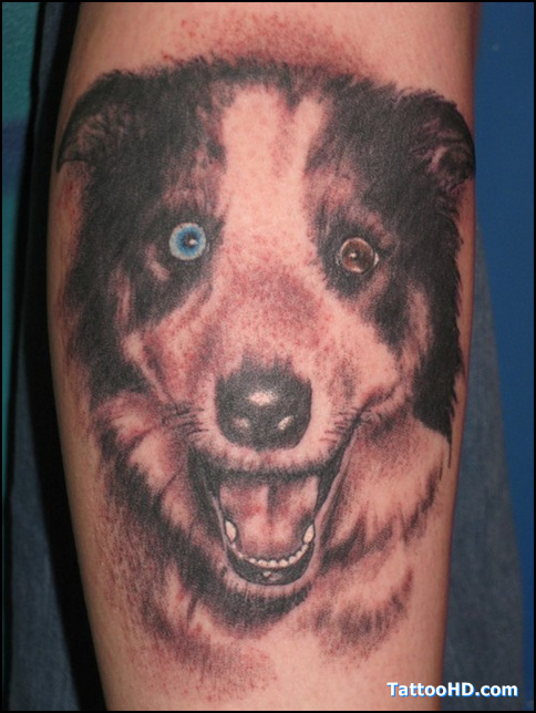 Attractive Strange Dog Tattoo Design For Boys