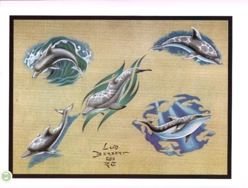 Beautiful Dolphin Tattoo Samples For Girls