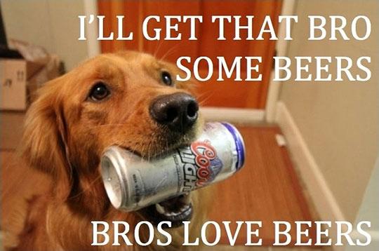 Beer Meme I'll Get That Bro Some Beers Bros Love Beers