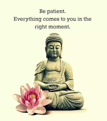 Buddha Quotes Sayings 08