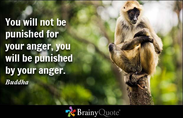Buddha Quotes Sayings 24