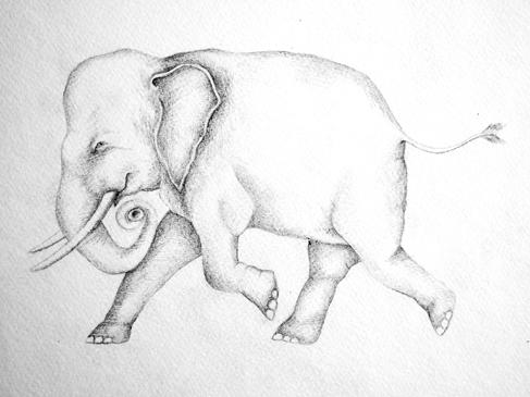 Charming Elephant Tattoo Sample For Girls
