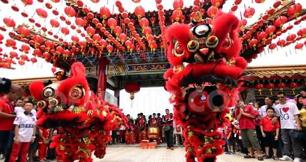 Chinese New Year Best Celebration Picture