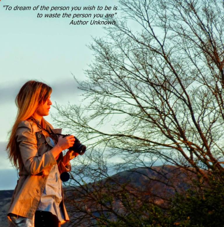 Cute Life Quotes To dream of the person you wish to be is to waste the person you are
