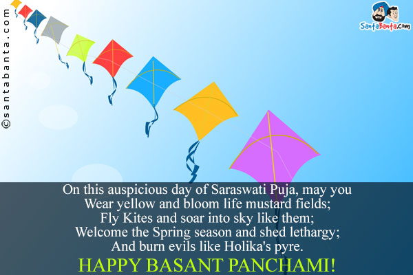 Fly Kites And Soar Into Sky Like Them Happy Basant Panchami Greetings Message Images