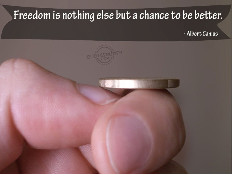 Freedom Quotes freedom is nothing else but a chance to be better