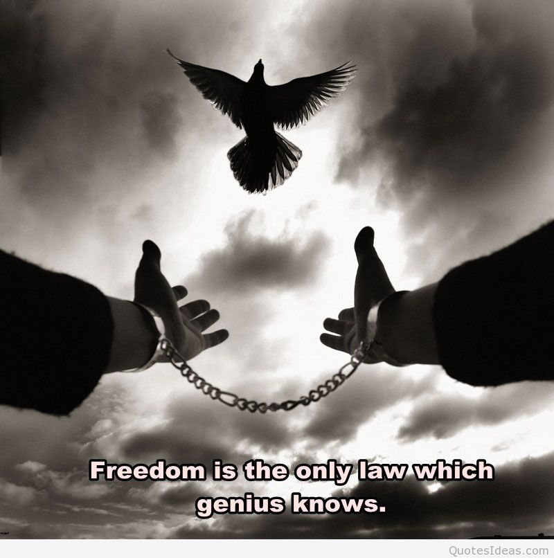 Freedom Quotes freedom is the way only law which genius knows