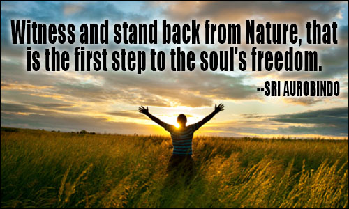 Freedom sayings witness and stand back from nature that is the first step to the soul's freedom