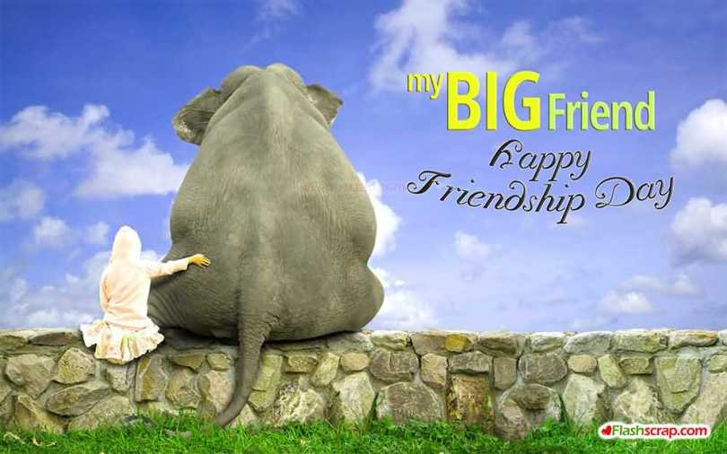 Funny Friendship Day Wishes Wallpaper