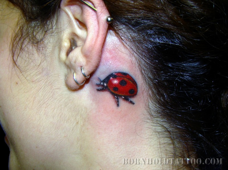 Great Back Ear Lady Bug Tattoo For Girls
