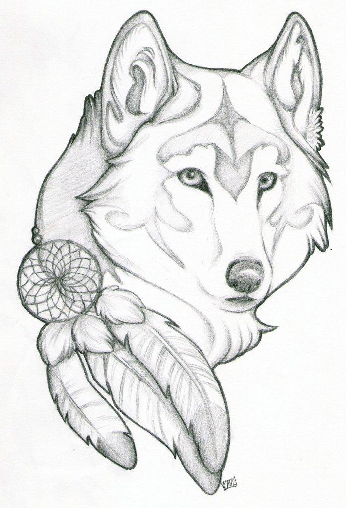 Groovy Wolf Dream Catcher Tattoo Design For Boys