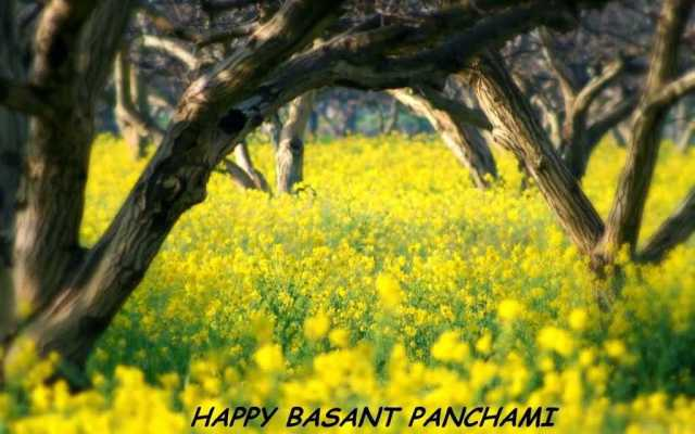 Happy Basant Panchami Greetings Wishes Wallpaper