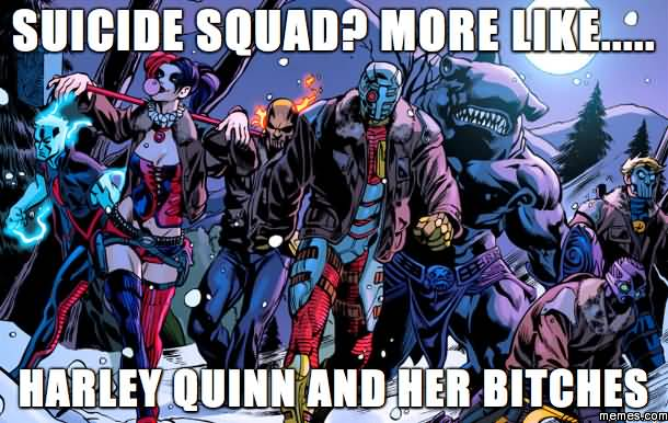 Harley Quinn Memes Suicide Squad More Like Harley Quinn And Her Bitches