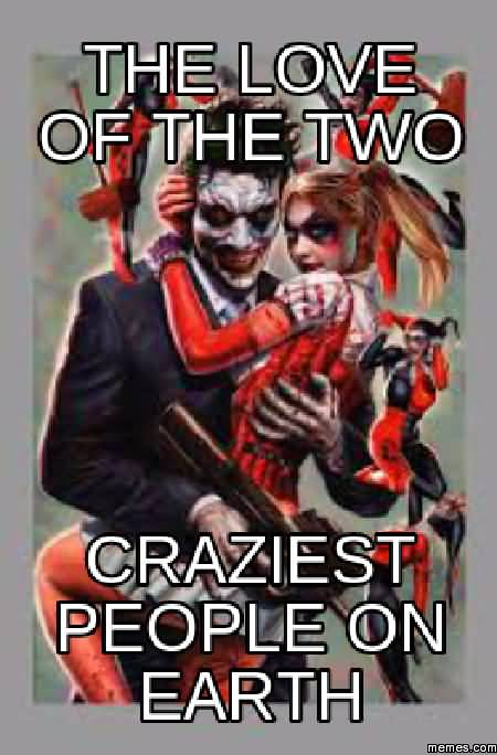 Harley Quinn Memes The Love Of The Two Craziest People