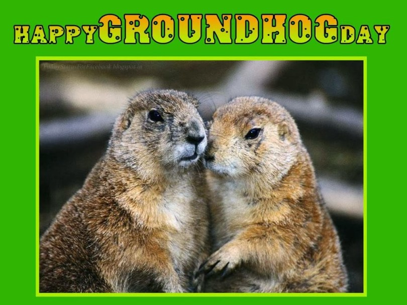 Have A Happy Groundhog Day Wishes Image