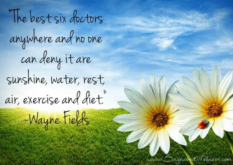 Health Quotes the best six doctors anywhere and no one can deny it are sunshine