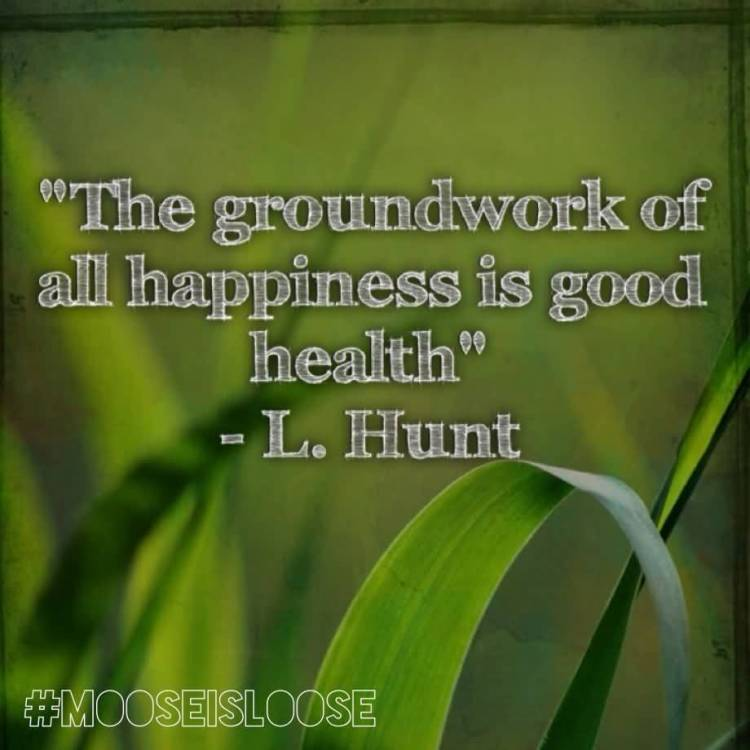 Health Quotes the groundwork of all happiness is good health,