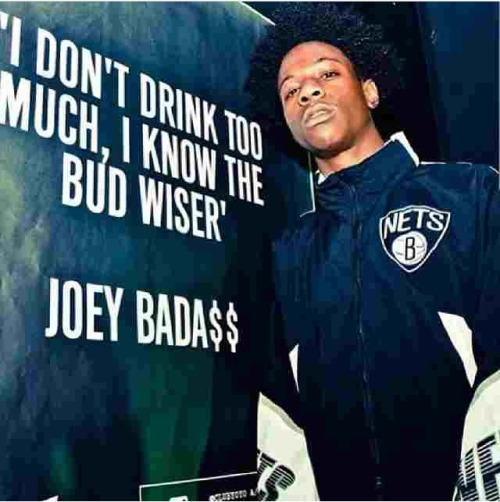 Joey Badass Quotes I don't drink too much i know the bud wiser