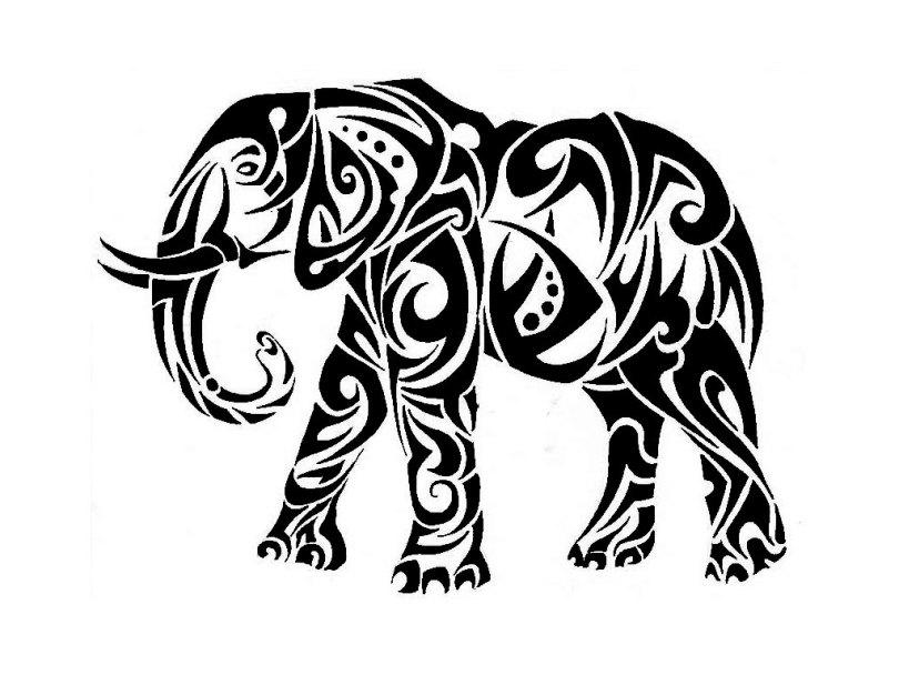 Latest Tribal Elephant Tattoo Stencil For Girls