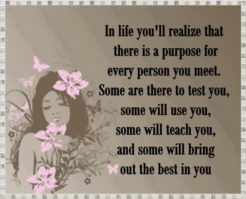 Life Sayings In life you'll realize that there is a purpose for every person you meet