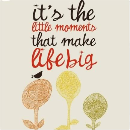 Little Big Quotes It's the little moments that make life big