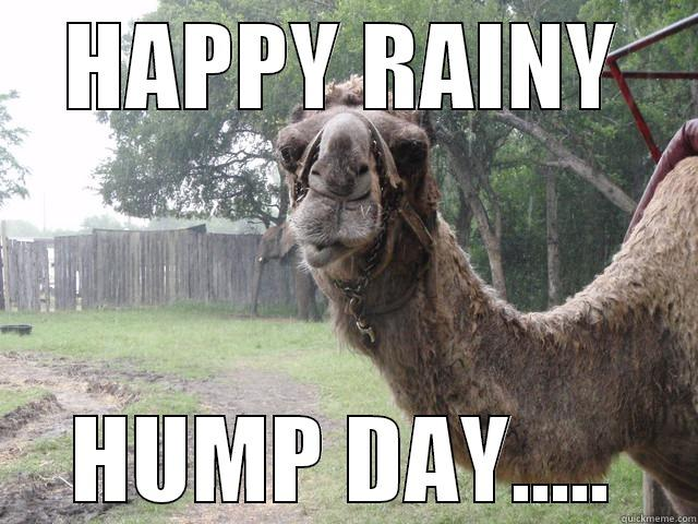 Meme Happy Rain Hump Day Graphic